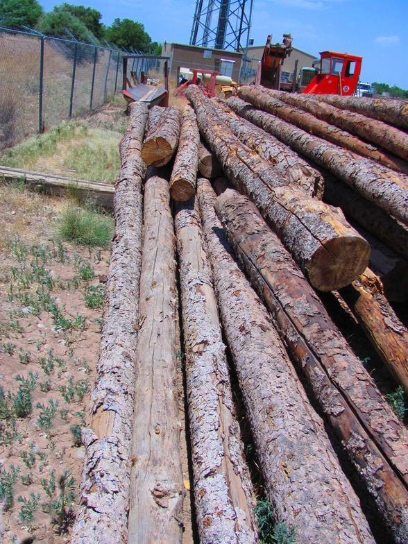 South West Hardwood Logs ~ Wholesale timber viga vigas